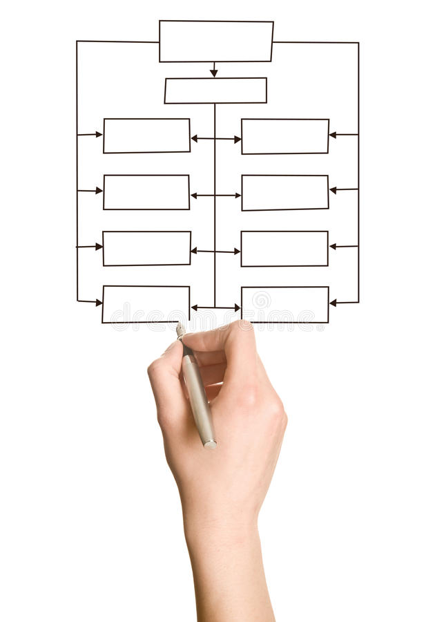 Hand Drawing Blank Organization Chart Stock Image  Image Of Hand