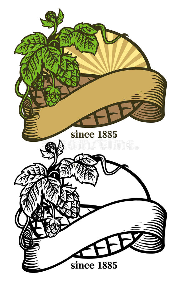 Hand drawing of hops and ribbon. Vector of hand drawing of hops and ribbon royalty free illustration