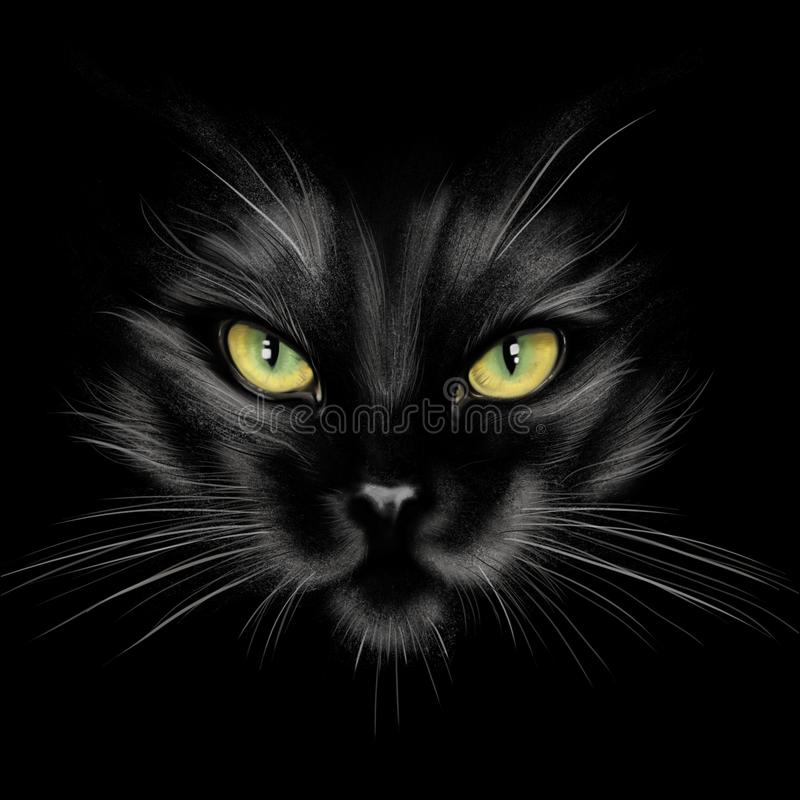 Hand-drawing portrait of a black cat stock photo