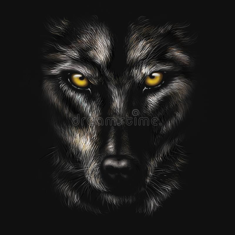 Hand-drawing portrait of a black wolf stock images