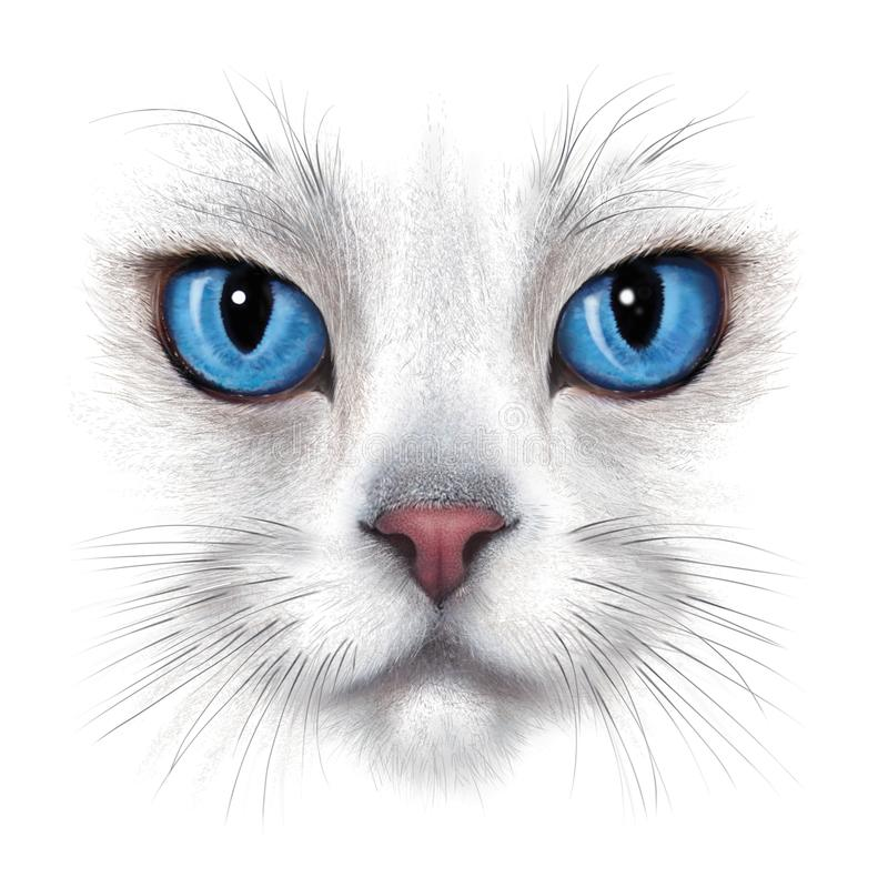 Free Hand-drawing Portrait Of White Cat Stock Photography - 108271552
