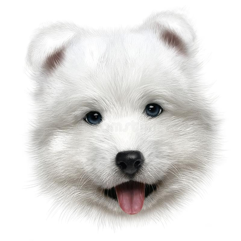 Hand-drawing portrait of a puppy Samoyed royalty free stock photography