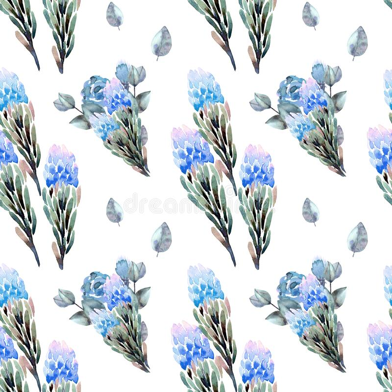 Hand drawing seamless watercolor floral patterns with protea blue, leaves, branches, eucalyptus and flowers. royalty free stock photos