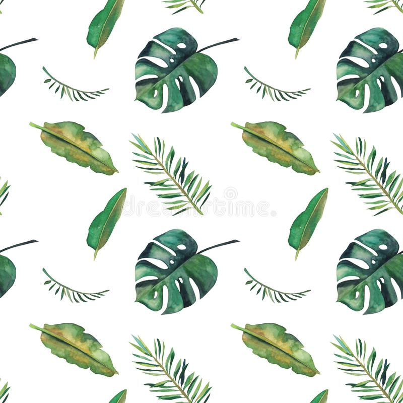 Hand-drawn άνευ ραφής σχέδιο watercolor Πράσινα τροπικά φύλλα στο άσπρο υπόβαθρο απεικόνιση αποθεμάτων