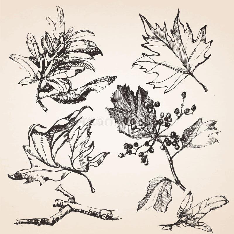Hand-drawn σύνολο κουζινών διανυσματική απεικόνιση