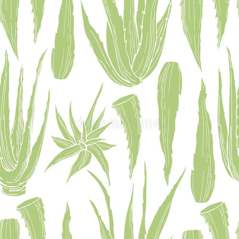 Hand drawn aloe vera plant. Vector seamless pattern royalty free illustration