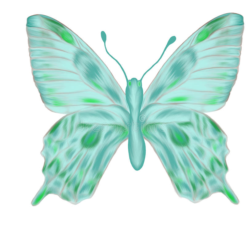 Download Hand Drawn Aquamarine Butterfly Stock Illustration - Image: 15616737