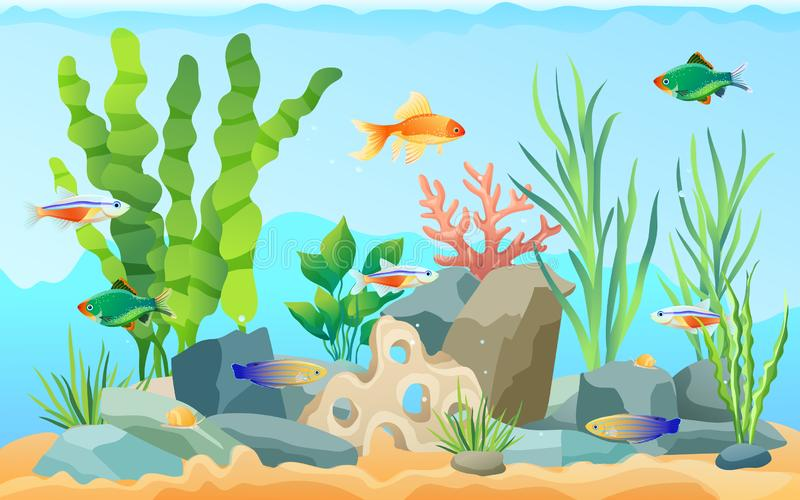 Hand drawn aquarium with fish and seaweed icons. Hand drawn aquarium with fish and seaweed. Goldfish and neon tetra, green tiger barb and blue striped tamiran stock illustration