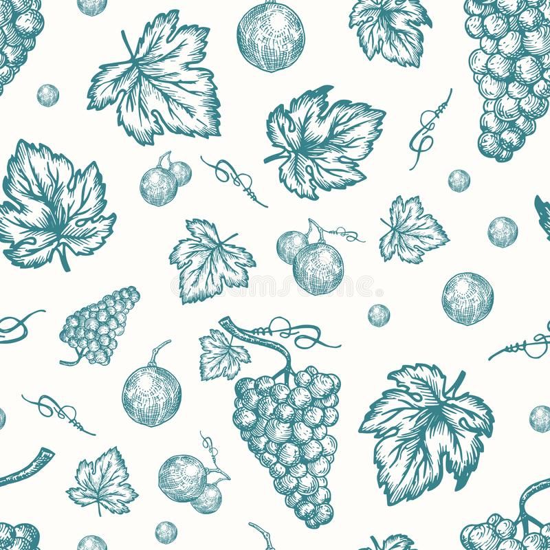 Hand Drawn Autumn Grapes Harvest Vector Seamless Background Pattern. Grape Berries, Brunch and Leaves Sketches Card or royalty free illustration