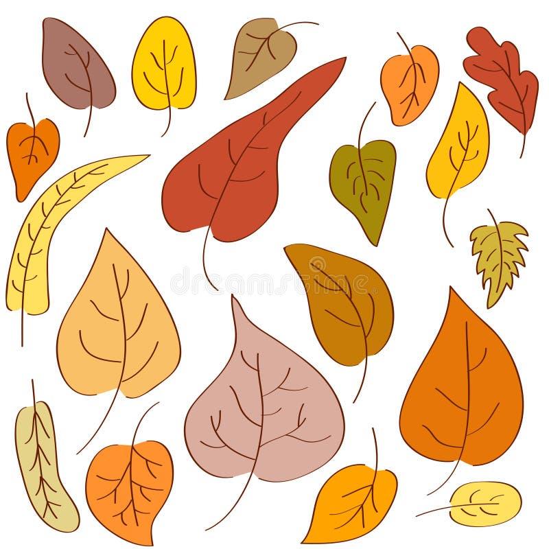Hand-drawn autumn leaves royalty free illustration