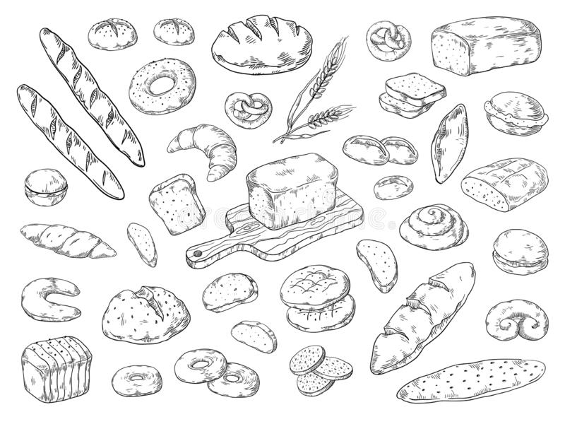 Hand drawn bakery. Doodle bread sketch, wheat flour types of bread, vintage graphic template. Vector bakery bagels and vector illustration