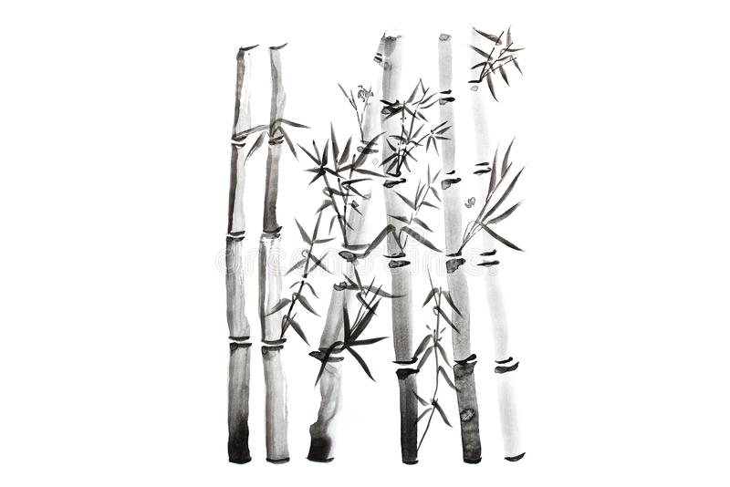 Hand drawn bamboo leaves and branch set, ink painting. Traditional dry calligraphic brush painting. isolated on white background. Hand drawn bamboo leaves and royalty free stock images