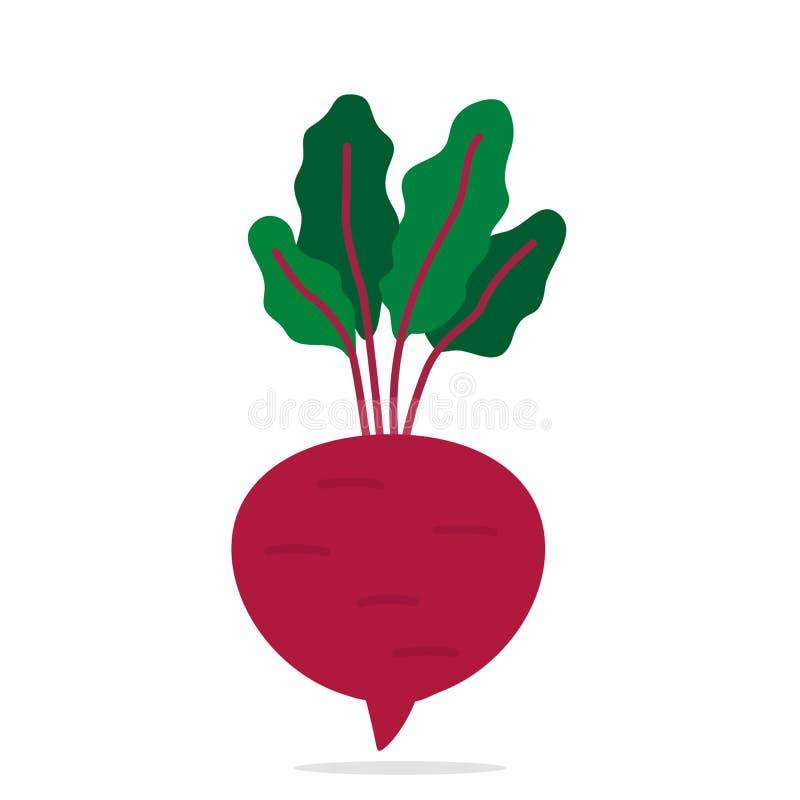 Hand Drawn Beet on White Background. Vector Illustration. Vegan food concept stock illustration