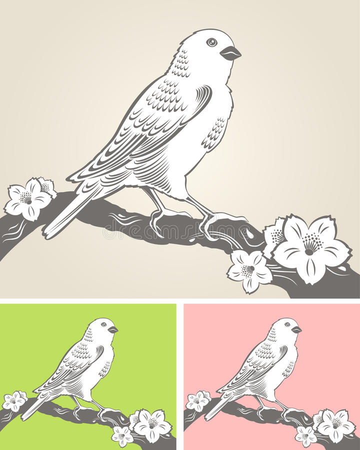 Hand Drawn Bird On A Blossom Branch Royalty Free Stock Photos