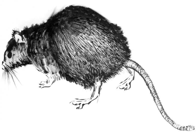 Hand-drawn black rat illustration stock illustration