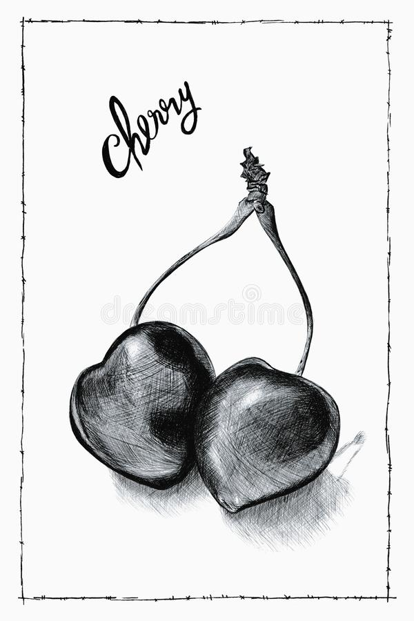 Hand drawn black and white ballpoint pen drawing of cherries with handwriting and frame royalty free stock photos