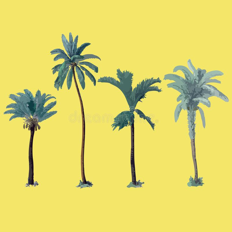 Hand drawn botanical vector illustration with palm trees. royalty free stock photography