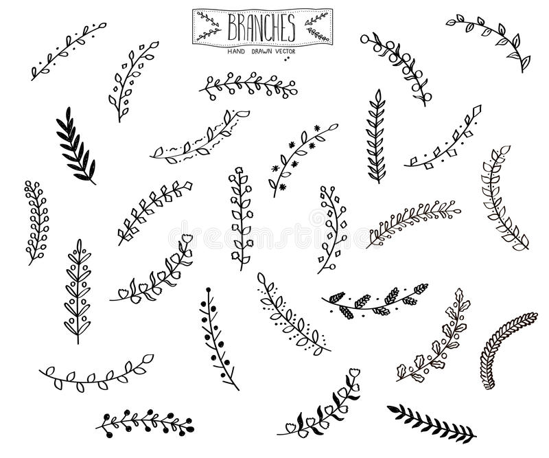 Hand drawn branches. stock images