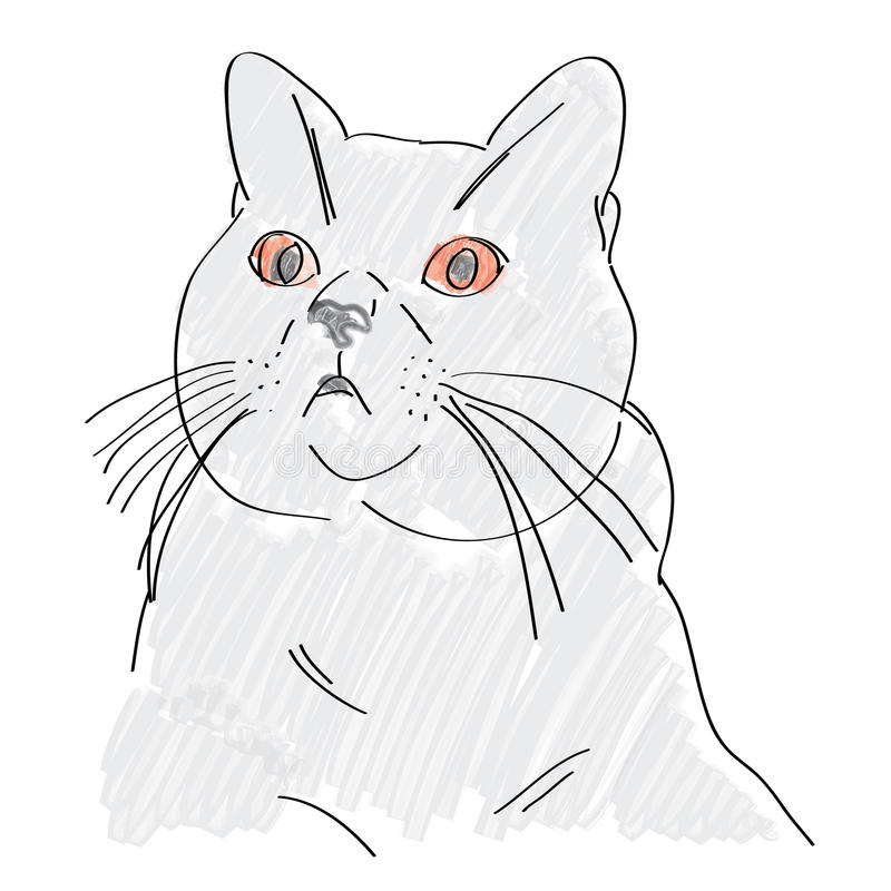 Hand Drawn British Blue Cat Royalty Free Stock Photography