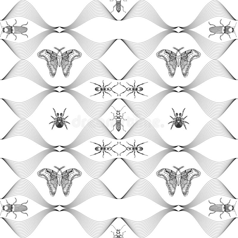 Seamless pattern with hand drawn butterflies. Entomological collection of highly detailed hand drawn butterflies. Retro royalty free illustration