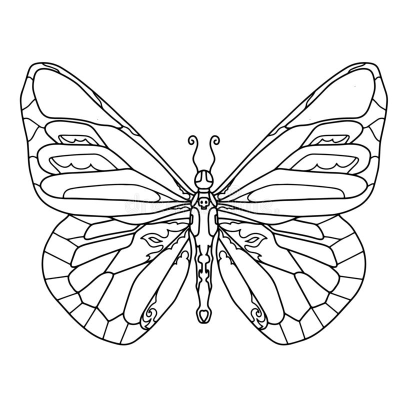 Hand drawn butterfly for t-shirt design or tattoo. Coloring book for kids and adults. Vector illustration stock illustration