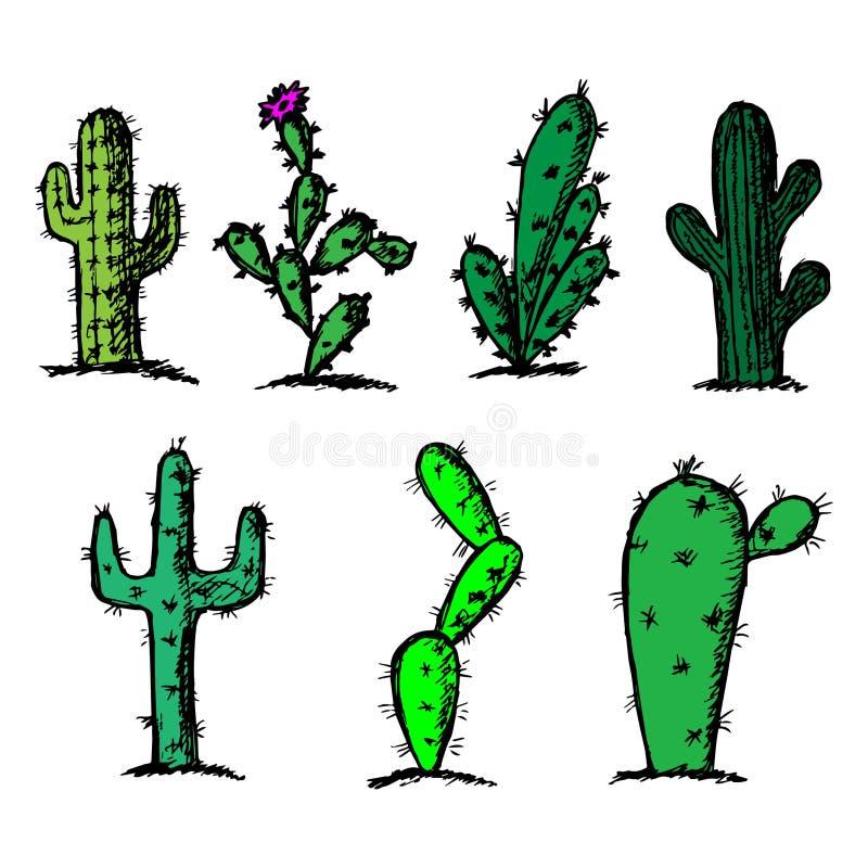 Hand drawn cactus set on a white background royalty free stock photo