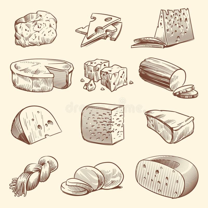 Hand drawn cheese. Various types of cheeses. Tasty brie, mozzarella and parmesan appetizer foods. Doodle sketch vintage stock illustration