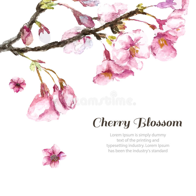 download hand drawn cherry blossoms stock vector illustration 60463116