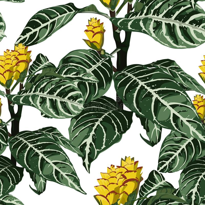 Hand drawn colorful tropical blooming exotic flowers, botanical floral and leaves seamless pattern. White background stock illustration