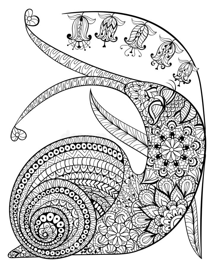 Hand drawn contented Snail and flower for adult anti stress Colo stock illustration
