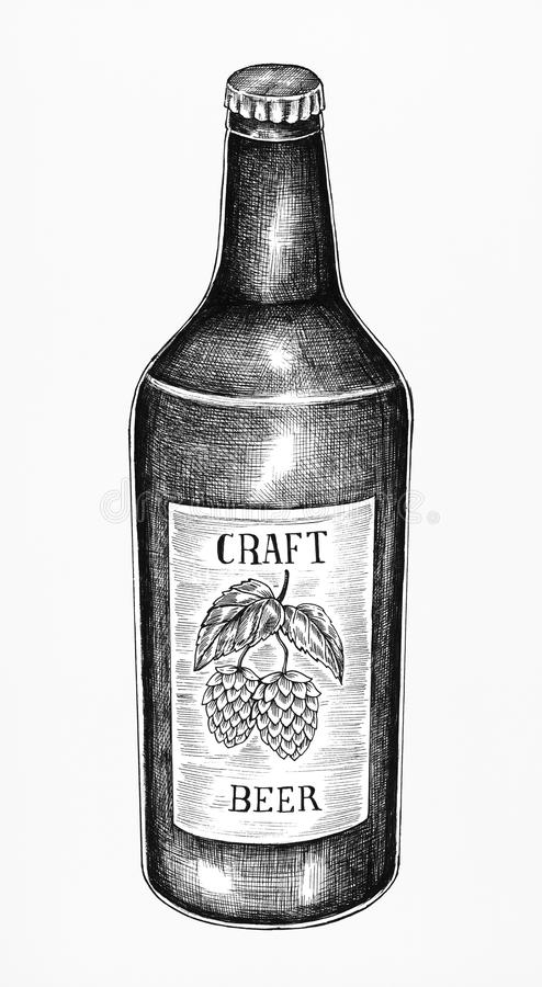 Hand drawn craft beer bottle royalty free illustration