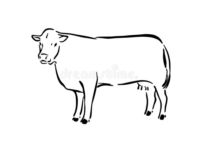 Cow Sketch Stock Illustrations – 5,744 Cow Sketch Stock