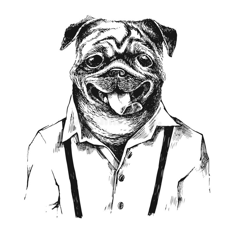 Hand drawn dressed up pug in hipster style. Hand drawn dressed up black and white pug in hipster style stock illustration
