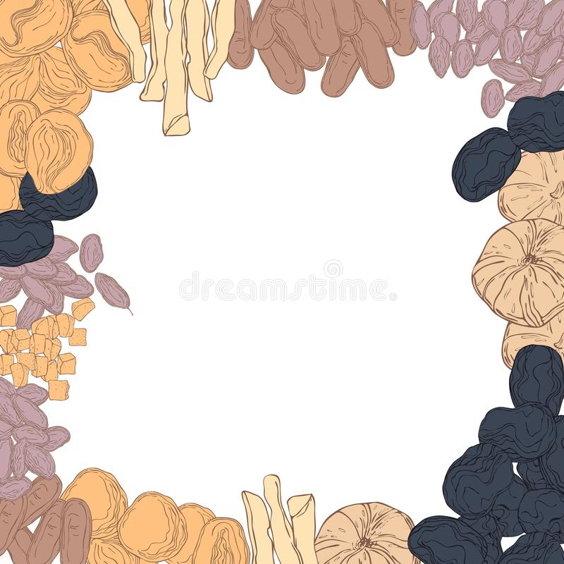 Hand drawn dried fruits.  Sketch illustration. Vector background with hand drawn dried fruits on white background.   Sketch illustration stock illustration