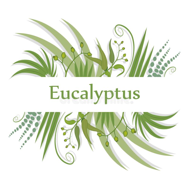 Hand drawn eucalyptus flower, eucalyptus leaves, green leaves, medical plant, eucalyptus tree for logotype, flyer, posters, card,. Label, badge, banner, design stock illustration