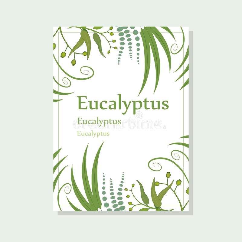 Hand drawn eucalyptus flower, eucalyptus leaves, green leaves, medical plant, eucalyptus tree for logotype, flyer, posters, card,. Label, badge, banner, design vector illustration