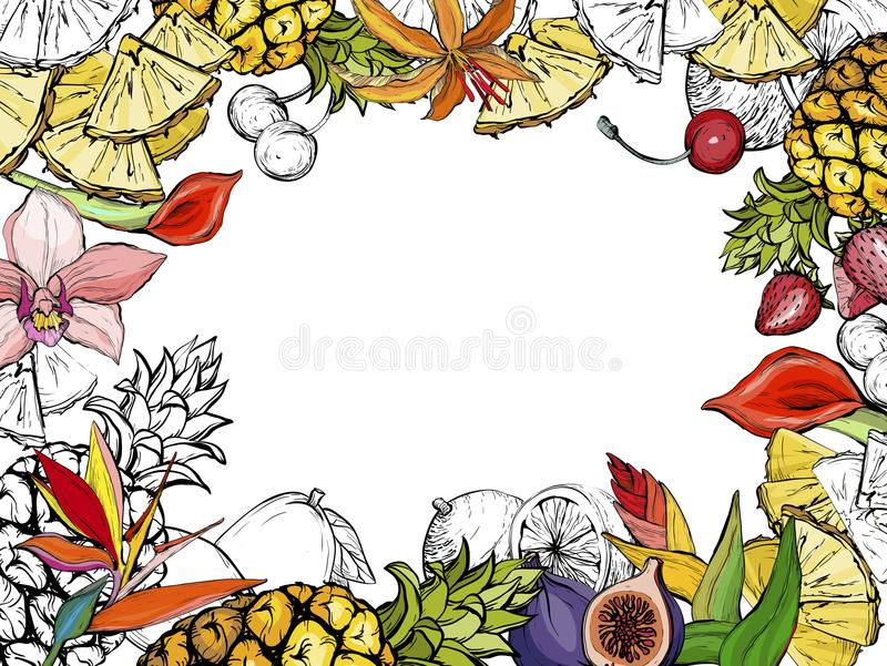 Hand drawn exotic summer background with fruit and flowers. Vector illustration stock illustration