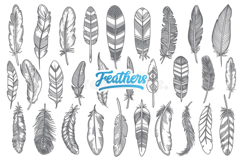 Hand drawn feather set with blue lettering royalty free stock image