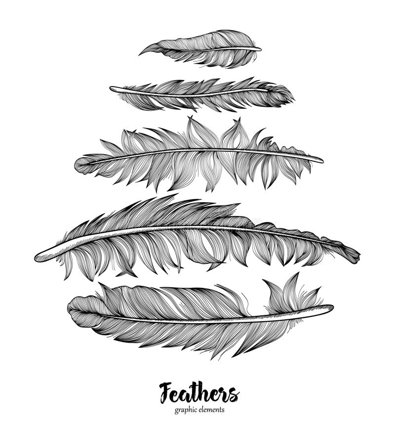 Hand drawn feathers set on white background stock illustration