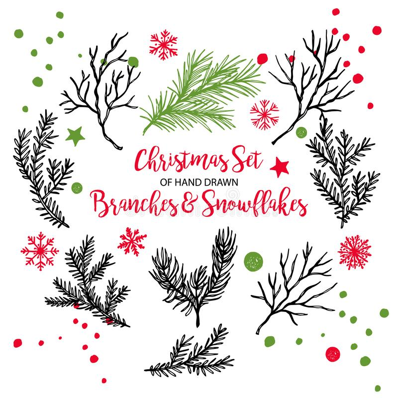 Hand drawn fir, pine cedar, coniferous branches. Christmas holiday winter plants for decoration. Vector isolated xmas stock illustration