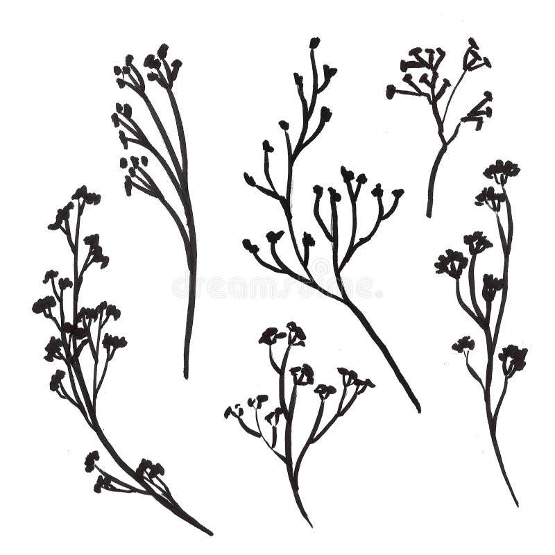 Hand Drawn Floral Doole Set vector illustration