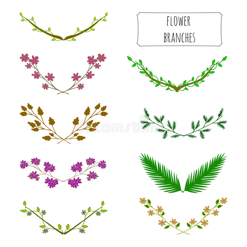 Hand drawn floral set of branches. vector illustration