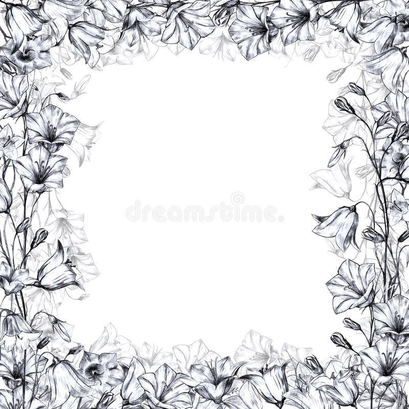 Hand drawn floral square frame with gray graphic bluebell flowers on white background and transparent floral layer. Hand drawn floral square frame with graphic royalty free illustration