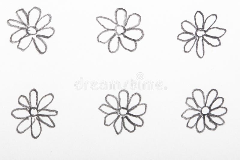 Hand drawn flower pencil sketches. Hand drawn flowers as pencil sketches royalty free stock photo