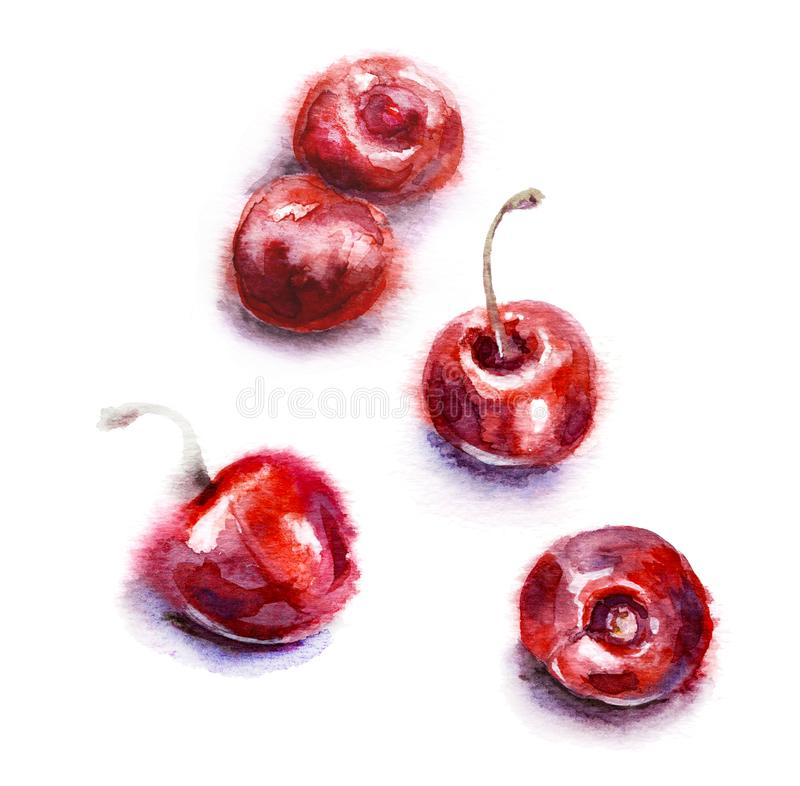 Watercolor Red Sweet Cherries stock illustration