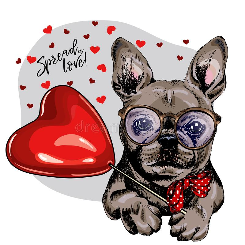 Hand drawn french bulldog with heart shape baloon. Vector Valentine day greeting card. Cute colorful dog wears glasses royalty free illustration