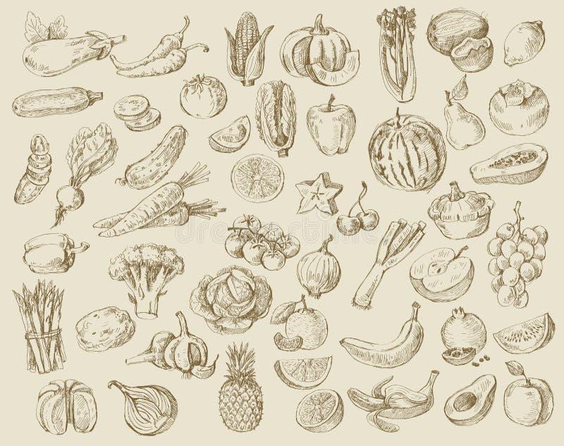 Hand drawn fruit and vegetables. Vector set of different hand drawn fruits and vegetables vector illustration