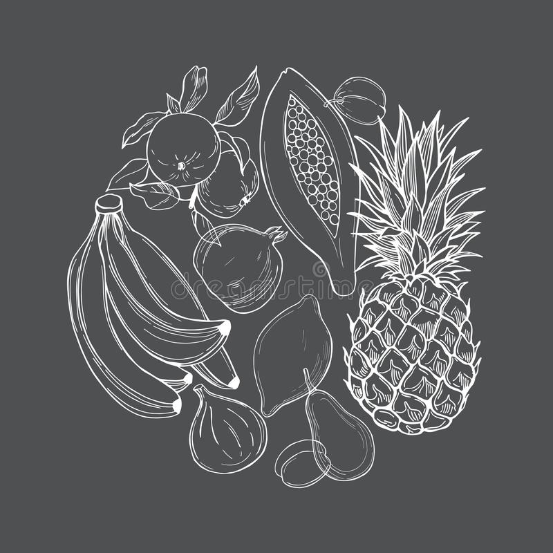 Fruits in a circle on grey  background. royalty free illustration