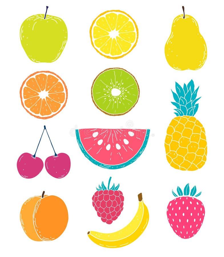 Hand drawn fruits vector illustration