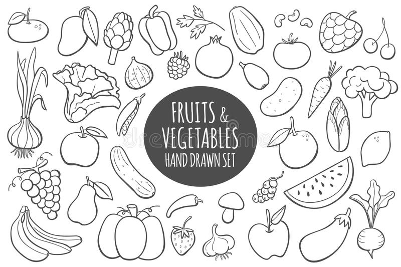 Hand drawn fruits and vegetables. Vector illustration. stock illustration